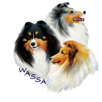 Logo - Wnnipeg Area Shetland Sheepdog Association